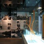 O Museu do Sabão funciona na antiga escola primária