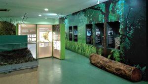 Centro Ciência Viva da Floresta - Proença-a-Nova