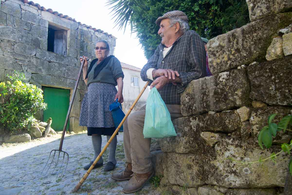 O linho tem tradição em Limões