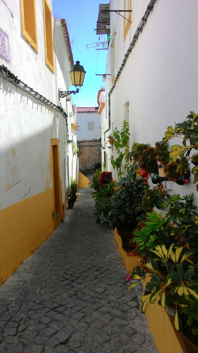 Foto: Emília Freire/Portugal de Lés a Lés