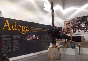 O museu conta a história do vinho de Bucelas