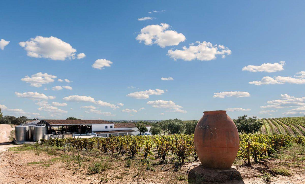 Na herdade São Miguel o vinho é produzido por meios mais tradicionais