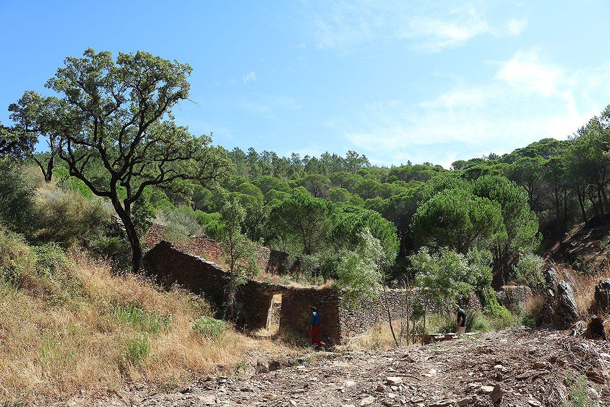 A herdade do convento estende-se por 600 hectares