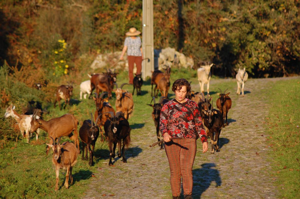 Isabel Marouço - a pastora-poeta