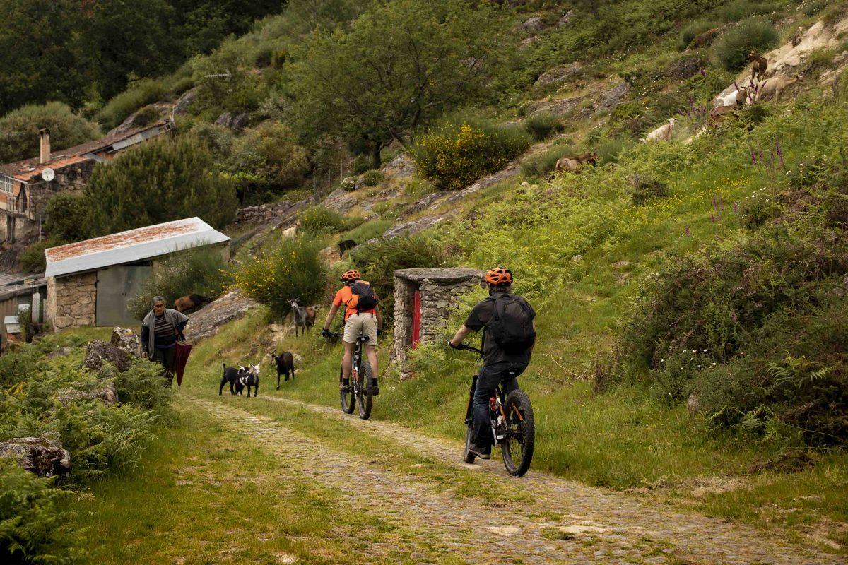 e-bike na serra